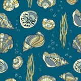Hand drawn seashells, seaweed andbubbles on blue background, s. Eamless pattern Royalty Free Stock Images