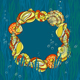 Hand drawn seashells, seaweed andbubbles card Stock Images