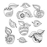 Hand drawn set of apples for anti stress colouring page. Pattern for coloring book. Illustration in zentangle style. Black and white background vector illustration