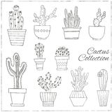 Hand drawn Set of Cactus in the pots. Royalty Free Stock Image