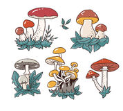 Hand drawn set with cartoon mushroom and toadstools. Vector illustration isolated on white background. Royalty Free Stock Images