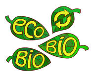 Hand drawn set of Eco labels. Ecology Inscriptions on leaf. Royalty Free Stock Image