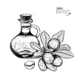 Hand drawn set of essential oils. Vector shea nut butter. Medicinal herb with glass dropper bottle. Engraved art. Good. For cosmetics, medicine, treating royalty free illustration
