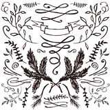 Hand-drawn set of florals and flourishes Royalty Free Stock Photography