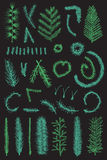 Hand drawn set green fir fine branch vector. On black background. Christmas tree Stock Images