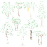 Hand Drawn Set of Green Trees. Doodle Drawings of Palms, Sequoia, Aloe, Acacia, Ceiba  in Sketch Style Stock Images