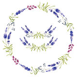 Hand drawn set of lavender flowers, wreaths and decoration elements Stock Photos