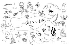 Hand drawn set with ocean life. royalty free stock photography
