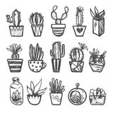 Hand Drawn Set Of Cactus In The Pots. Stock Photo