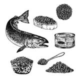 Hand drawn set of red caviar. Royalty Free Stock Images