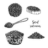 Hand drawn set of red caviar. Royalty Free Stock Photos
