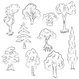 Hand Drawn Set of Trees. Doodle Drawings of Fir, Cypress, Birch, Oak in Sketch Style Royalty Free Stock Photography