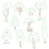 Hand Drawn Set of Trees. Doodle Drawings of Green Fir, Cypress, Birch, Oak in Sketch Style. Stock Photo