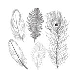 Hand drawn set of various black and white bird feathers, vector illustration Royalty Free Stock Photo