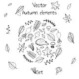 Hand drawn set of vector autumn elements. Includes foliage, berries, mushrooms and a hedgehog. Royalty Free Stock Photography