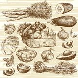 Vegetables. Basket with onions. Hand drawn set. Hand drawn set of vegetables royalty free illustration