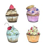 Hand drawn set of watercolor cupcakes on white. Background Stock Image