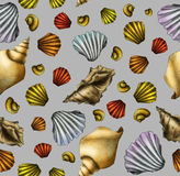 Hand drawn shell seamless pattern stock image