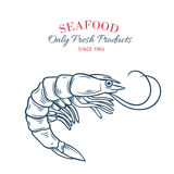 Hand drawn shrimp icon. Stock Photos