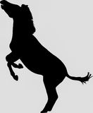 Hand drawn silhouette of a wild zebra jumping. Illustration, black isolated on white background Stock Photo