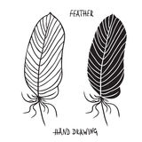 Hand drawn silhouettes of feathers in black and white. Vector illustration Stock Photography
