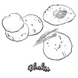 Hand drawn sketch of Bhakri bread vector illustration