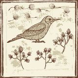 Hand drawn sketch of bird and floral elements Stock Photography