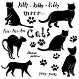 Hand drawn Sketch cats silhoets and traces. Outlined Doodles with Lettering. Vector Illustration Elements isolated on white backgr Royalty Free Stock Image