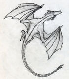 Hand drawn sketch of a dragon. Hand drawn pencil sketch of a little dragon with bat like wings Stock Photos