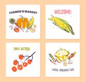 Vector set of hand drawn cards for food festival, farmers market and harvest fair with fresh hand drawn sketch food elements - veg. Etables. Good for price tags royalty free illustration