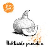 Hand Drawn Sketch Hokkaido Pumpkin. Kuri With Seeds And Slice. Autumn Fruit. Seasonal Symbol. Healthy Nutrition Vector Illustratio Stock Photo