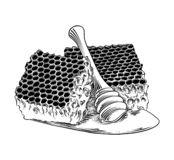 Hand drawn sketch of honeycomb with wooden dipper in black isolated on white background. Detailed vintage etching style drawing. stock illustration