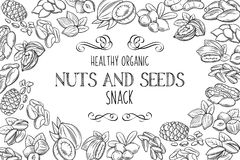 Hand drawn sketch nuts and seeds Stock Photography