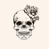 Hand drawn sketch scull with rose tattoo line art. Vintage vecto Royalty Free Stock Photos