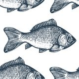Hand drawn sketch seafood background. Vector seamless pattern with fish. Vintage carp illustration. Can be use for menu. Hand drawn sketch seafood background Royalty Free Stock Photo