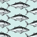 Hand drawn sketch seafood background. Vector seamless pattern with fish. Vintage tuna illustration. Can be use for menu. Hand drawn sketch seafood background Stock Photos