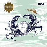 Hand drawn sketch seafood of crab and oregano. Stock Photo