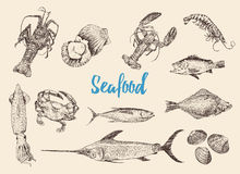 Hand drawn sketch set of seafood. Vector illustrations, retro engraving style Royalty Free Stock Photography