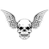Hand drawn sketch skull with wings, tattoos line art. Vintage ve. Ctor illustration  on white background Stock Image