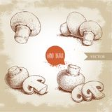 Hand drawn sketch style champignon mushroom composition set. Whole and slice cuts. Vector farm fresh food collection Royalty Free Stock Photography