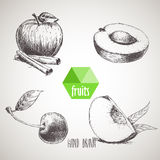 Hand drawn sketch style fruits set. Stock Photos