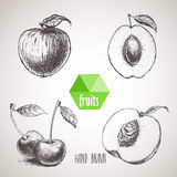 Hand drawn sketch style fruits set. Royalty Free Stock Images
