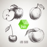 Hand drawn sketch style fruits set. Royalty Free Stock Photo