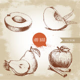 Hand drawn sketch style fruits set. Apricot, peach quarter with leafs, whole pear and half, apple with cinnamon. Eco food vector illustration collection on old Stock Image