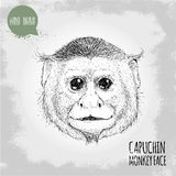Hand drawn sketch style illustration of Capuchin monkey face Royalty Free Stock Photo