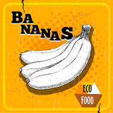 Hand drawn sketch style illustration of ripe bananas. Royalty Free Stock Photo