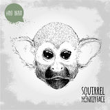 Hand drawn sketch style illustration of Squirrel monkey face Royalty Free Stock Photography