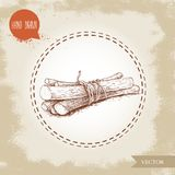 Hand drawn sketch style liquorice roots bunch tied with strings . Herbal and aromatic vector illustration. EPS10 + JPEG preview Royalty Free Stock Photo