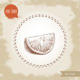 Hand drawn sketch style orange fruit segment slice.   Stock Images