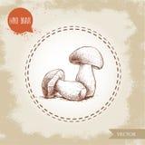 Hand drawn sketch style porcini mushroom composition. Fresh forest boletus edulis. Italian food ingredient. Fresh market product Stock Photo